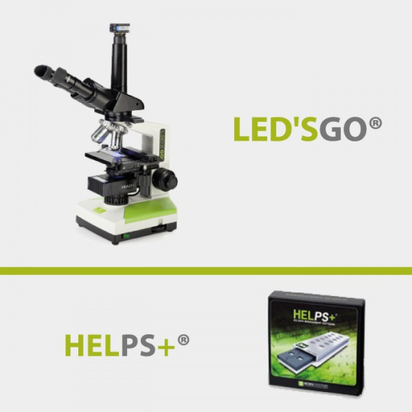 ledsgp-et-helps